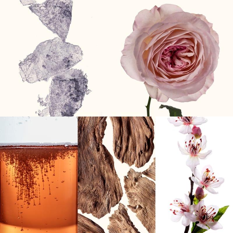 Resultado de imagem para 212 VIP ROSE ingredients image includes Musk, Rose, Champagne Rosé, Drywood and Peach Tree flower Família olfativa: floral