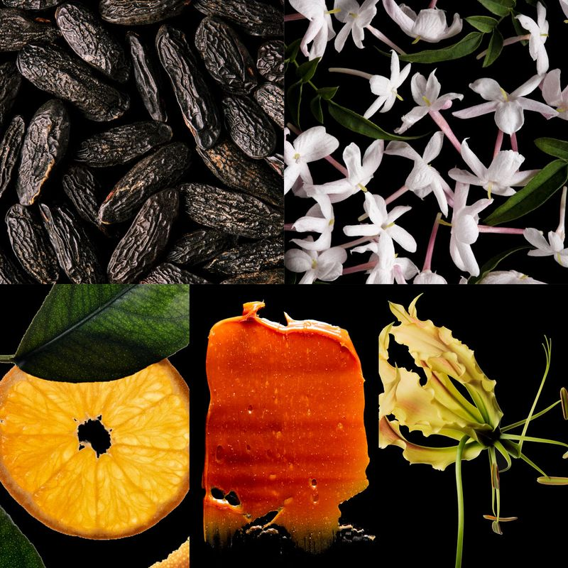 Good Girl Legere ingredients image includes Tonka, Jasmin, Tangerine, Dulce de leche and Ylang Ylang
