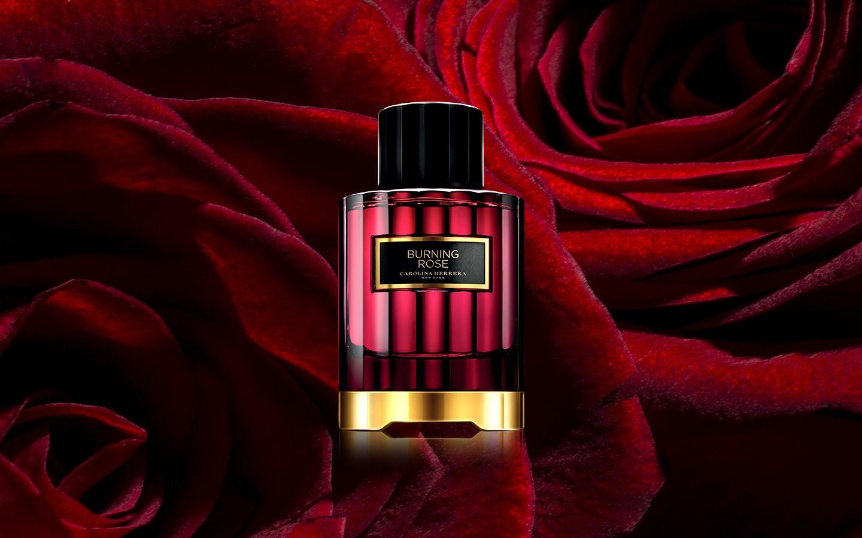 85b4eace8 Burning Rose | Carolina Herrera