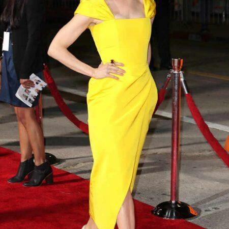 chny-fashion-Renee-Zellweger-wearing-carolina-herrera